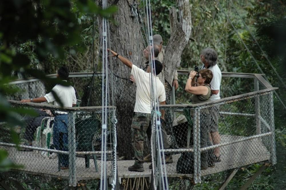Atta Rainforest Lodge at The Canopy Walkway & Atta Rainforest Lodge at The Canopy Walkway | Explore Guyana